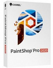 paintshop pro 2020 ultimate (esdpsp2020ulml)